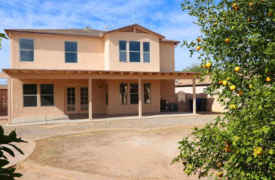 Tucson, Oro Valley, Marana, Sahuarita, Vail Single Family Home Active Contingent: 5169 S Fox Trot Drive