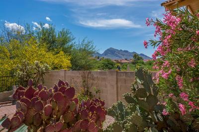 Tucson Single Family Home For Sale: 11526 N Eagle Peak Drive