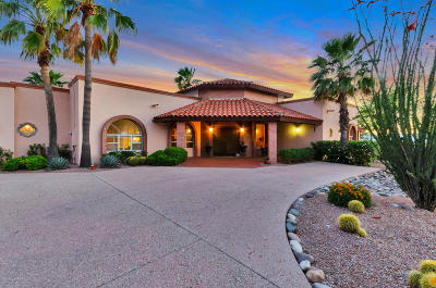 Tucson Single Family Home For Sale: 4400 N Territory Circle