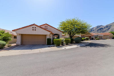 Tucson Single Family Home For Sale: 6374 E Placita Divina