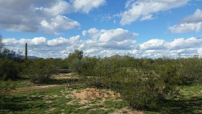 Residential Lots & Land For Sale: E Goodman Ranch Place #4A
