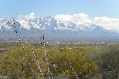 Tucson Residential Lots & Land For Sale: 5835 N Abington Road #119