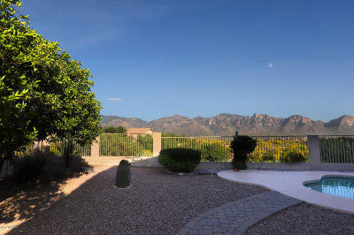 Oro Valley Single Family Home For Sale: 13676 N Balancing Rock Drive