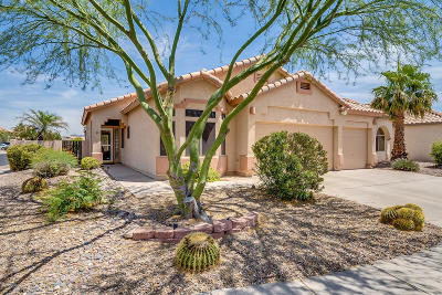 Marana Single Family Home Active Contingent: 6434 W Rosamond Way