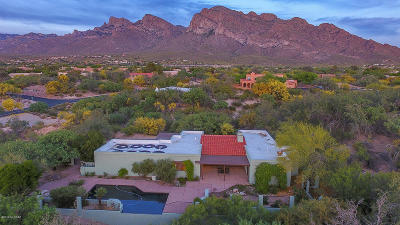 Oro Valley Single Family Home For Sale: 9955 N Desert Sky Road