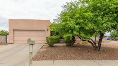 Tucson Single Family Home For Sale: 384 W Mossman Road