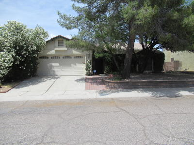 Tucson Single Family Home For Sale: 5240 W Eaglestone Loop