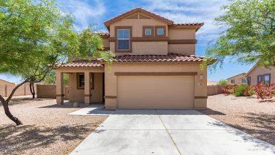 Marana Single Family Home For Sale: 14179 N Bronze Statue Avenue