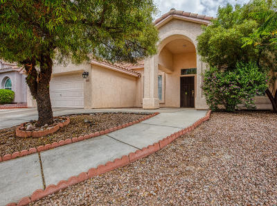 Tucson Single Family Home For Sale: 2930 W Calle Lucinda