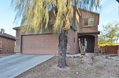Pima County Single Family Home For Sale: 2330 E Calle Pelicano