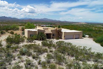 Single Family Home For Sale: 20410 E Pegasus Run Court