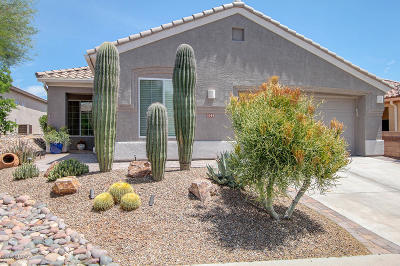Marana Single Family Home For Sale: 5088 W Desert Eagle Circle
