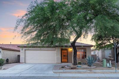 Tucson Single Family Home For Sale: 6218 S Wheaton Drive