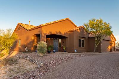 Tucson Single Family Home For Sale: 9730 N Camino Del Plata