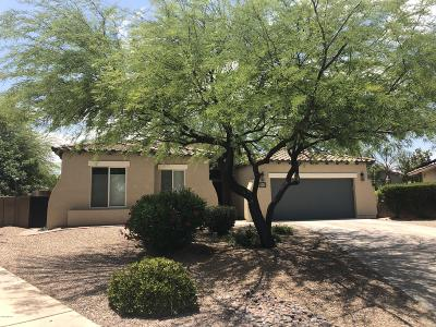 Tucson Single Family Home For Sale: 969 N Corte Del Sol Feliz