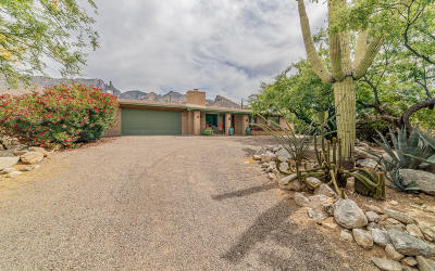 Tucson Single Family Home For Sale: 3863 E Mount Kimball Place
