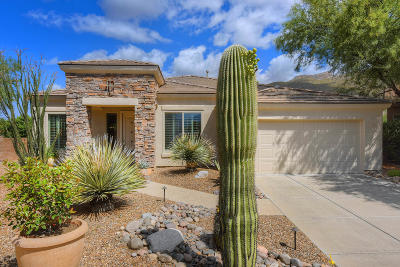 Tucson Single Family Home For Sale: 5171 N Fairway Heights Drive