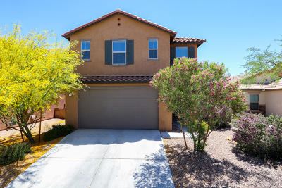 Tucson Single Family Home For Sale: 9503 Crowley Brothers Drive