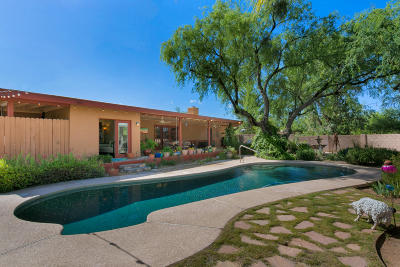 Tucson Single Family Home For Sale: 3741 N Hash Knife Circle