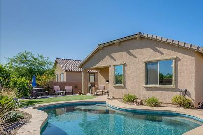 Oro Valley Single Family Home For Sale: 13517 N Vistoso Reserve Place