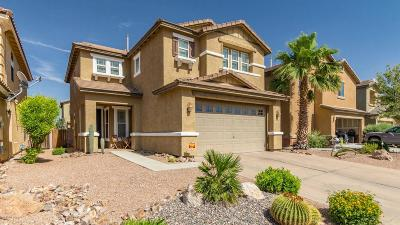 Tucson Single Family Home For Sale: 6581 S Chinese Lanterns Drive