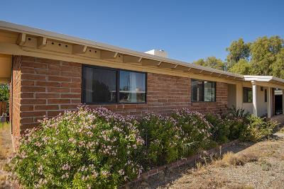 Tucson Single Family Home For Sale: 6949 E Luana Drive
