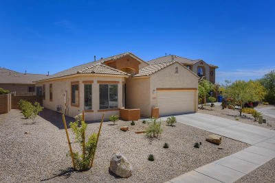 Tucson Single Family Home For Sale: 1335 W Bloomington Place