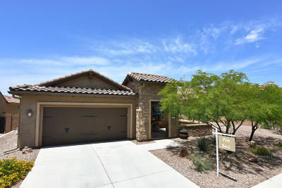 Marana Single Family Home For Sale: 14187 N Lava Falls Trail