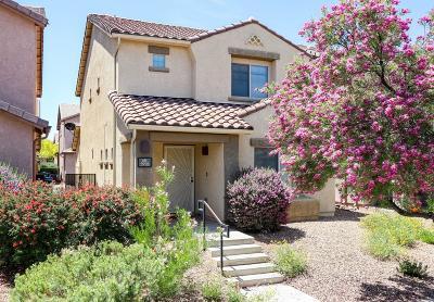 Tucson Single Family Home For Sale: 5993 S Sweet Birch Lane