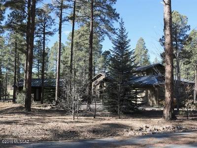 Single Family Home For Sale: 1300 S Vine Maple Lane