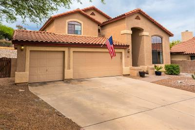 Tucson Single Family Home For Sale: 10610 E Channelside Drive