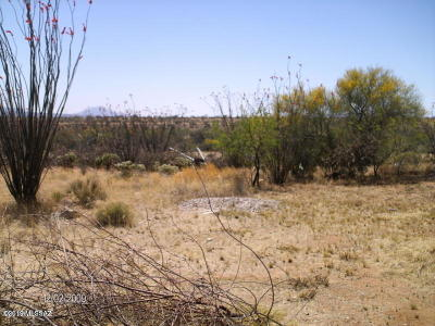 Green Valley Residential Lots & Land For Sale: 4031 W Calle Dos