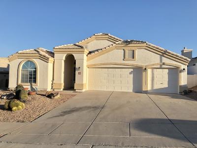 Tucson Single Family Home For Sale: 3661 W Bellewood Place
