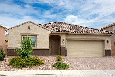 Marana Single Family Home For Sale: 9022 W Rolling Springs Drive