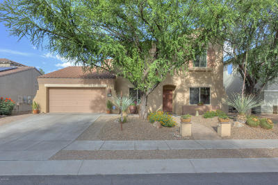Sahuarita Single Family Home For Sale: 15019 S Camino Rancho Sueno