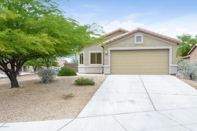 Tucson Single Family Home For Sale: 6550 W Wolf Valley Way