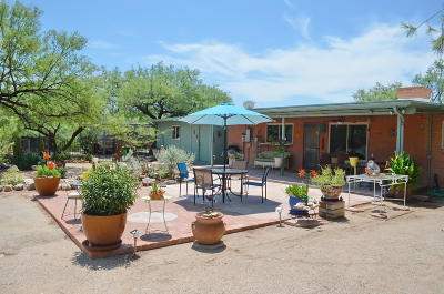Tucson Single Family Home For Sale: 11141 E Quick Draw Place
