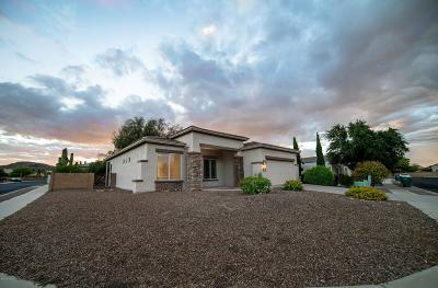Tucson Single Family Home For Sale: 9159 N Ceremony Place