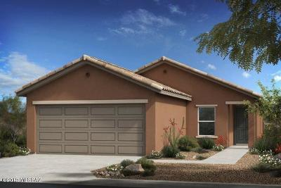 Tucson Single Family Home For Sale: 9472 S Desert Fauna Loop