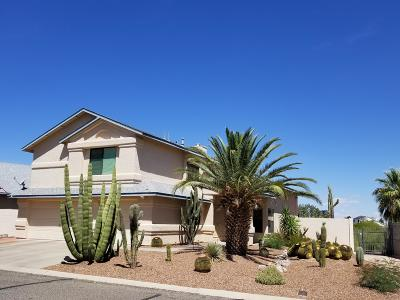 Tucson Single Family Home For Sale: 5050 W Didion Drive