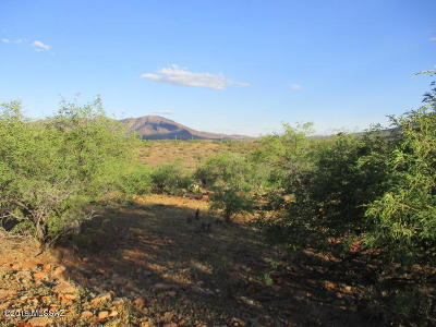 Rio Rico Residential Lots & Land For Sale: 1933 Camino Carina #7/10