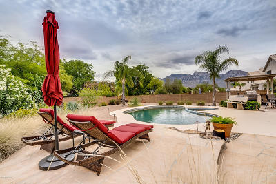 Oro Valley Single Family Home For Sale: 12340 N Echo Valley Drive