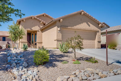 Green Valley Single Family Home For Sale: 1053 W Pastora Peak Drive