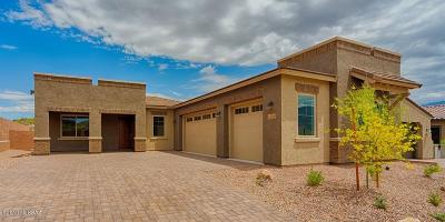 Oro Valley Single Family Home For Sale: 13310 N Velvetweed Court