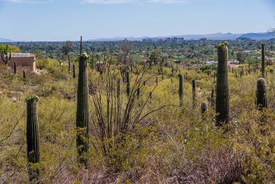 Tucson Residential Lots & Land For Sale: N La Lomita #1