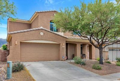 Tucson Single Family Home For Sale: 13930 N Big Wash Overlook Place