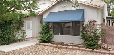 Tucson Single Family Home For Sale: 2812 W Ribera Place
