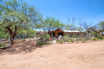 Pima County Single Family Home For Sale: 35000 S Old Ruggles Road S