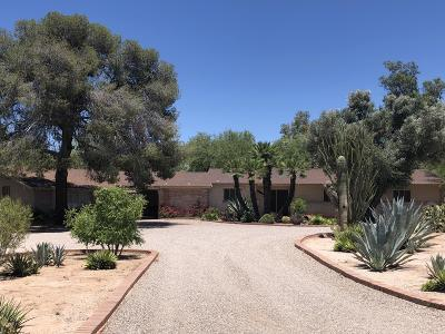 Tucson Single Family Home For Sale: 3489 E Via Esperanza