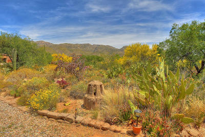 Tucson Single Family Home For Sale: 12034 E Makohoh Trail